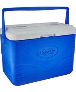 Dobisell جعبه خنک نگهدارنده 26لیتری کلمن Coleman Glacier Cooler 28QT 1 247x296 - جعبه خنک نگهدارنده 26 لیتری کلمن - Coleman Glacier Cooler 28 QT
