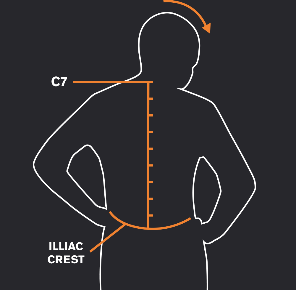 c7 illiac crest 5 - راهنمای انتخاب ارتفاع پشت و کمر کوله پشتی